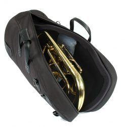 Baryton/tenorhorn/eufonium